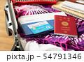 スーツケース 海外旅行保険付クレジットカード 夏 出張 パスポート 54791346
