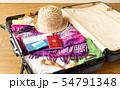 スーツケース 海外旅行保険付クレジットカード 夏 旅行 出張 パスポート 54791348