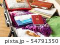スーツケース 海外旅行保険付クレジットカード 夏 出張 パスポート 54791350