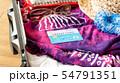 スーツケース 海外旅行保険付クレジットカード 夏 旅行 出張 54791351