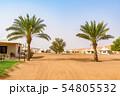 ワヒバ砂漠(オマーン、ワヒバ・サンズ) 54805532