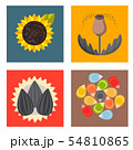 Cereal seeds grain product badge logo templates set natural plant muesli grainy organic porridge 54810865