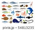 魚介イラストセット 54813235