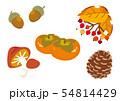 秋の木の実セット イラスト 54814429