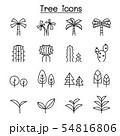 Tree thin line icon set 54816806