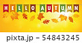 hello autumn party flags banner on yellow sunny background with falling leaves 54843245