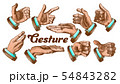 Color Different Gesture Set Vintage Vector 54843282
