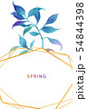 透明水彩 水彩画 木の葉 54844398