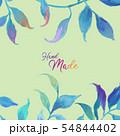 透明水彩 水彩画 木の葉 54844402