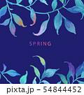 透明水彩 水彩画 木の葉 54844452