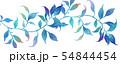 透明水彩 水彩画 木の葉 54844454