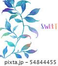 透明水彩 水彩画 木の葉 54844455