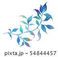 透明水彩 水彩画 木の葉 54844457