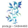 透明水彩 水彩画 木の葉 54844460