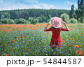Dreamy woman in red dress and a big red striped hat turned back in beautiful herb flowering poppy 54844587