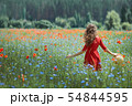 back of a brunette woman walking along a poppy field at sunset, the concept of sensuality, freedom 54844595