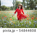 Lovely young romantic woman in straw hat on poppy flower field posing on background summer. Wearing 54844608