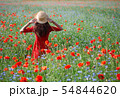 Lovely young romantic woman in straw hat on poppy flower field posing on background summer. Wearing 54844620