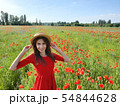 Lovely young romantic woman in straw hat on poppy flower field posing on background summer. Wearing 54844628