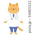 猫の医者 全身(手描き風) 54865522
