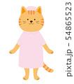 猫の看護婦 全身(手描き風) 54865523