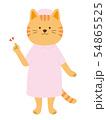 猫の看護婦 説明 案内 全身(手描き風) 54865525