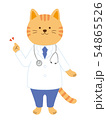 猫の医者 説明 案内 全身(手描き風) 54865526