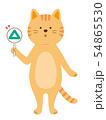 三角札を持った猫 クイズ 全身(手描き風) 54865530