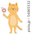 まる札を持った猫 クイズ 全身(手描き風) 54865532