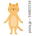 猫 全身 茶トラ 全身(手描き風) 54865534