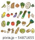 野菜1 盛り合わせ オーガニック ベジタブル 素材 54871655