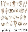 野菜2 線画 盛り合わせ バリエーション ベジタブル 素材 54873891
