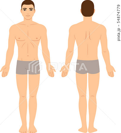 Male body front and back 54874779