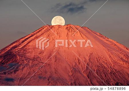 パール富士-箱根・金時山から見る富士山山頂に沈む満月 54878896