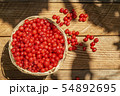 basket with currants 54892695