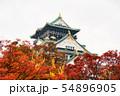 秋の大阪城 54896905