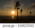 夕暮れ時の海と木のシルエット 54923502