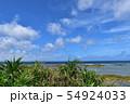 青空と海と植物 54924033