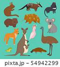 Australian wild animals cartoon collection australia popular animals like platypus, koala, kangaroo 54942299