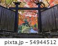 京都・二尊院・秋・紅葉・黒門 54944512