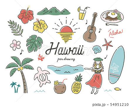 ハワイ南国ペン画カラー 54951210