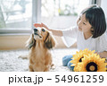 犬のいる暮らし 女の子 54961259