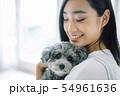 犬のいる暮らし 女性 54961636