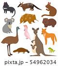 Australian wild animals cartoon collection australia popular animals like platypus, koala, kangaroo 54962034