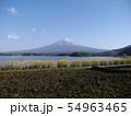 大石公園(河口湖湖畔) 54963465