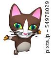 猫くん 54978029