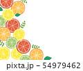 柑橘系フルーツの背景素材 54979462