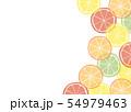 柑橘系フルーツの背景素材 54979463