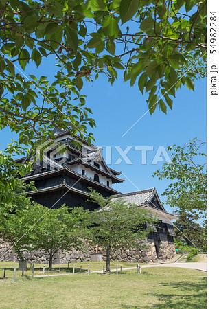 春の松江城 54982284