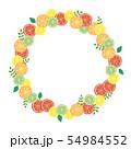 柑橘系の果物のフレーム 54984552